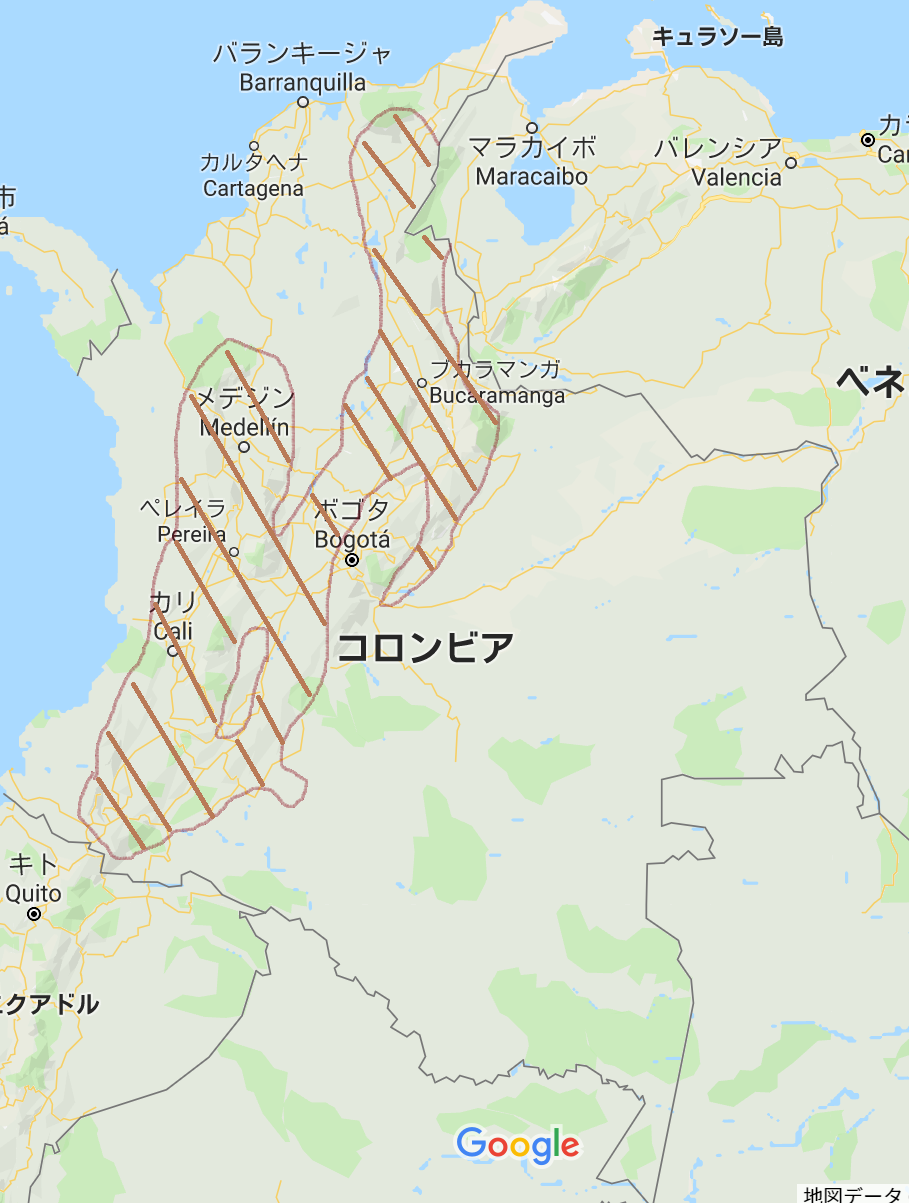 コロンビア産地
